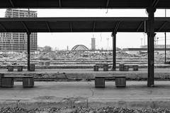 (loranger) Tags: belgrade serbie gare nb bw trainstation decay leica monochrom