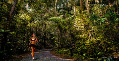 The runner of the park. (Aglez the city guy ☺) Tags: miamifl coconutgrove trees tropical walking walkingaround woman runner exploration experiment earlyinthemorning vizcayamuseumgardens outdoors