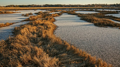 scarborough marsh, maine (jtr27) Tags: dsc06125l jtr27 sony alpha nex5n nex emount sigma 19mm f28 exdn dn scarborough marsh maine sunrise newengland landscape wideangle