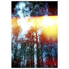 (yulia_adamova) Tags: toycamera film lomography fuji holga