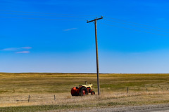 Little tractor big field (darletts56) Tags: sky blue cloud clouds line lines wire wires power pole post posts grass fence fences gold golden green yellow road highway field fields prairie saskatchewan canada brown red case tractor little big