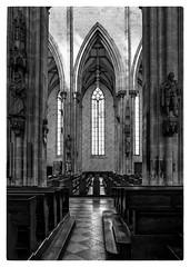 Ulm (noa1146) Tags: ulm dmclx100 ulmermünster