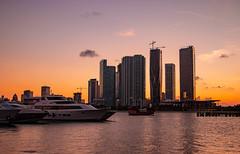 Miami Sunset Time-9804 (islandfella) Tags: miami florida macarthur causeway skyline city downtown sunset duck silhouette skyscrapers water marine island gardens bridge sky boats luxury evening