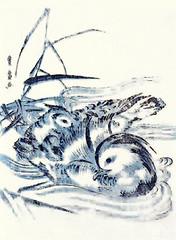 Mandarin duck (Japanese Flower and Bird Art) Tags: bird mandarin duck aix galericulata anatidae toyohiro utagawa ukiyo woodblock print japan japanese art readercollection
