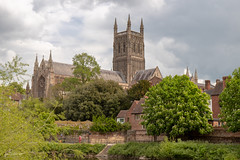 Worcester Cathedral (ivanstevensphotography) Tags: cathedral worcester trees tower architecture history