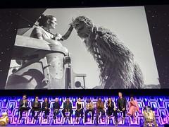 Star Wars Celebration Chicago (ksomm814) Tags: rise skywalker