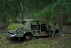 Mercedes Benz (mariburg) Tags: marode alt old sonyalpha7ii sonyfe2470mmf4zaoss auto car mercedes mercedesbenz