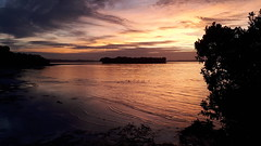 Sunset at Sunkist Bay, New Zealand (scinta1) Tags: newzealand auckland pohutukawacoast beachlands sunkistbay motukarakaisland sunset sky colour silhouette evening clouds calm fiery water orange dramatic ducks
