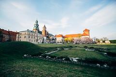 Wawel Castle (Javier Pimentel) Tags: polonia castle arquitectura wawelroyalcastle katedrawawelska castillodewawel castillo cracovia krakow architecture polen cracow poland voivodatodepequeñapolonia