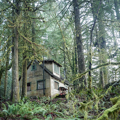 New Lease on Land (Aaron Bieleck) Tags: 500cm hasselblad film hasselblad500cm 120film analog 6x6 square filmisnotdead mediumformat wlvf kodakportra400 cabin mthoodnationalforest 60mmct forest landscape oregon pnw pacificnorthwest
