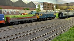 A British Rail Class 26 Waits to Depart the Yard With A Freight. (ManOfYorkshire) Tags: glenislaroad glenislard depot mpd perth scotland fictitious oogauge 176 scale model railway train layout neepsend sheffield exhibition 2019 scottish 26031 class26 railblue britishrail freight coaching stock detailed weathered