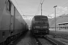 domo II set 83 #26 (train_spotting) Tags: beuracardezza domoii ferrovienordmilano nordcargo dbcargoitaliasrl vectrondc e1910195inc siemens captrain e483 traxxf140dc bombardier nikond7100
