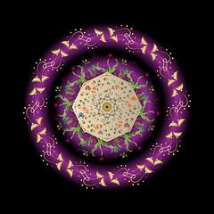 Circumplexical No 3677-01 (bennington.alan) Tags: mandala rosewindow multicolored geometric symmetrical circular decorative spinning abstract conceptual vector graphic hindu buddhist chinese asian oriental eastern religious spiritual concentric holy meditation modern contemporary chakra healingart sacred yoga movement tribal math patterns metaphysics cosmos regenerative symbolic visionary fibonacci sanskrit tibetan carlyung trance yantra