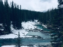 River Runs Wild .. (Mr. Happy Face - Peace :)) Tags: trees forest art2019 spring mountains glacier waters bc field canada yoho national parkway emerald snowcaps