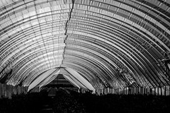 Greenhouse (atenpo) Tags: ca california 166 highway hwy taft maricopa central valley agriculture ag san joaquin west greenhouse arch pattern