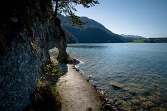rund um den Weißensee (andreas.zachmann) Tags: deu steine see himmel weg berge wasser ufer wald weisensee äste füssen bayern deutschland