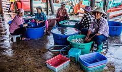 2019 - Cambodia - Sihanoukville - Tumnuk Rolok (Ted's photos - Returns late November) Tags: 2019 cambodia cropped nikon nikond750 nikonfx tedmcgrath tedsphotos vignetting baskets tubs ladies females tumnukrolok tumnukroloksihanoukville tumnukrolokcambodia sihanoukville sihanoukvillecambodia hats smiles seating seated red redrule teeth dents ក្រុងព្រះសីហនុ