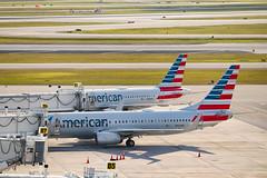 """""""Americans Sunbathing"""" (metro.spotting) Tags: americanairlines boeing pbi plane planespotting airport airline n950nn n764us"""