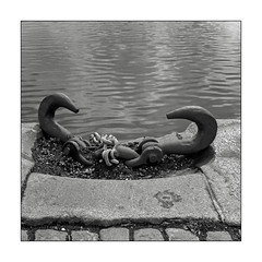 Hooks by the harbour (K.Pihl) Tags: rolleiflex35e water monochrome chain rodinal125 aarhusharbour planar75mmrolleiflex blackwhite schwarzweiss bw pellicolaanalogica analog film cobblestones