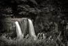 Wailua Falls, Kauai, Hawaii (EdBob) Tags: wailua falls waterfall kauai river water blackwhite blackandwhite bw sepia monochrome monochromatic tropical travel silkywater forest trees landscape nature hawaii edmundlowephotography edmundlowe edlowe america usa allmyphotographsare©copyrightedandallrightsreservednoneofthesephotosmaybereproducedandorusedinanyformofpublicationprintortheinternetwithoutmywrittenpermission