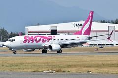 C-GXRW (LAXSPOTTER97) Tags: cgxrw boeing 737 737800 swoop cn 39082 ln 5511 bob aviation airport airplane cyxx