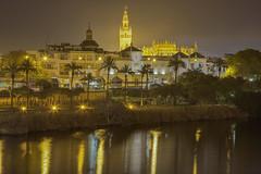 La cattedrale d'oro / The golden cathedral (Sevilla, Andalusia, Spain) (AndreaPucci) Tags: seville andalusia spain cathedral plazadetoros night guadalquivir andreapucci giralda