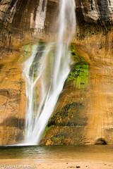 Lower Falls in Slow Motion (Ralph Earlandson) Tags: grandstaircaseescalante utah waterfall desert coloradoplateau calfcreekfalls escalantecanyons