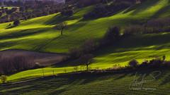DSC_4490-1 (stefano.paglialunga1) Tags: outdoors green campagna colline paesaggimarchigiani provinciamacerata tolentino beautiful nature natura reflex nikond7000 landescape