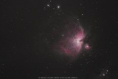 M42 - Orion Nebulae (StellarTrip) Tags: orion nebulae stellartrip astro astrophotography stars deepsky nebuleuse