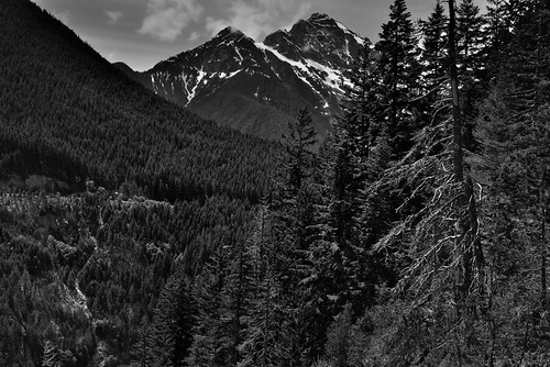This Land (Black & White, North Cascades National Park Service Complex)
