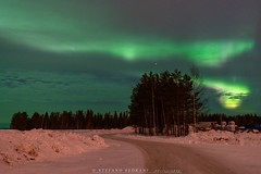 A green sky... (stefano.sedrani1) Tags: frozen cold snow winter sky trees auroraborealis aurora nikon finland lapland atmosphere scenery beautiful landscape nature