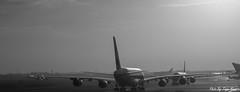 A380 (tiago_moreira23) Tags: dubai airport a380 airplane trip morning view canon 7d old camera good photos tamron 70300 street photograph