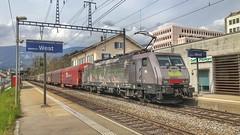 ES 64 F4 094 (Die_Eisenbahn) Tags: sbb sbbcargo sbbc novelis es64f4 es64f4094 eurosprinter solothurn solothurnwest schweiz switzerland zug train güterzug freighttrain