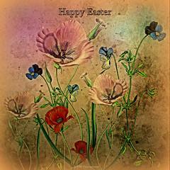 Floral Medley (Rollingstone1) Tags: easter flowers floral medley colour vivid art artwork