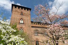 Pavia, Italy: the medieval castle at spring (clodio61) Tags: castellovisconteo europe italy lombardy pavia ancient architecture blossom building castle city cityscape color day exterior flower garden historic landmark medieval old outdoor park photography pink plant spring springtime tower tree urban white