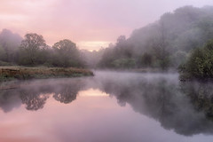 Lakeland dawn (Pete Rowbottom, Wigan, UK) Tags: dawn sunrise pink purple pastel fog mist cumbria lakedistrict waterreflections trees beauty nature peterowbottom nikond810 still serene tranquil uk england