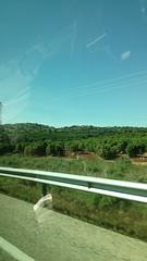 Llanura de Peñaflor, Sevilla (Benny de Pino Montano) Tags: llanura vegetación andalucía españa peñaflor sevilla carretera plain herbage spain seville