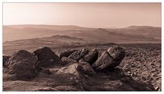 Hay Tor, looking north (FlickrDelusions) Tags: devon dartmoor haytor landscape duotone