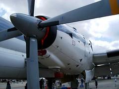 "Dassault Breguet Atlantic 00006 • <a style=""font-size:0.8em;"" href=""http://www.flickr.com/photos/81723459@N04/46915680095/"" target=""_blank"">View on Flickr</a>"