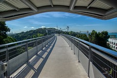 Siloso skywalk on Sentosa island in Singapore (UweBKK (α 77 on )) Tags: siloso skywalk bridge walk path treetop architecture construction sentosa island singapore southeast asia sony alpha 77 slt dslr