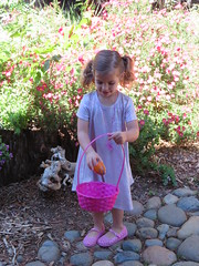 Easter Egg Hunt 2019 (rudyg39) Tags: family easter easteregghunt backyard isla