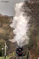 IMG_6883-Edit-5_edited-1 (Bev Cappleman) Tags: nymr goathland northyorkshiremoors train steam railway heritagerailway northyorkshiremoorsrailway