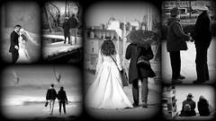 Couples en monochrome (Thierry LARERE) Tags: photomontage îleauxmoines couple palette leguerno parcanimalieretbotaniquedebranféré passerelle plœmeur plagedufortbloqué véliplanchiste portdevannes france xian danseur danse chine 中华人民共和国 西安 parapluie ombrelle sac mariés mariage sacàdos chapeau robedemariée
