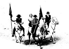 Les Gardians et la Camarguèse (aficion2012) Tags: défilé gardians gardiens camargue cheval chevaux tradition cotumes people camarguese arles francia france provence monochrome bw parade desfile woman horses