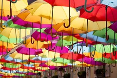 Vers le risque zéro (Gerard Hermand) Tags: 1904188323 gerardhermand france paris canon eos5dmarkii villageroyal parapluie umbrella couleur colour color
