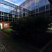 Alte Neue Universitätsbibliothek (13)