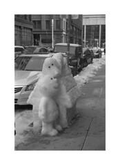 (billbostonmass) Tags: trix ddx 14ddx800min68f m6 50mm summicron film epson v800 boston massachusetts winter 2019 snoopy
