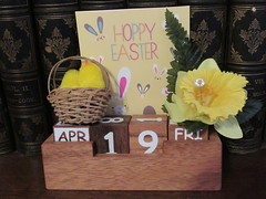 Friday, 19th,  Good Friday IMG_5802 (tomylees) Tags: chicks daffodil calendar perpetual essex morning spring easter goodfriday april 2019 19th friday