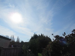 Friday, 19th, Easter sunshine IMG_5803 (tomylees) Tags: essex morning spring easter goodfriday april 2019 19th friday weather sky blue