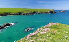 Colours of Cornwall (tonysemmens) Tags: pollyjoke newquay cornwall kernow lovecornwall nikond7000 sigma1750mm spring blues bluesea bluesky nofilter